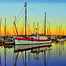 Lindy ~ HDR Series ~ Port Townsend, Washington ~ by lanebrain photography