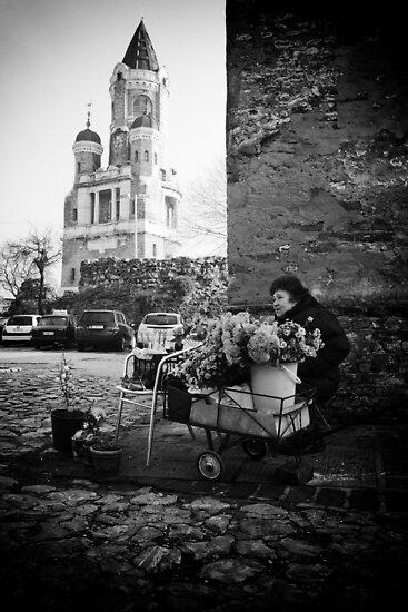 My Fair Lady by Aleksandar Topalovic