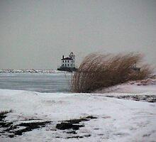 """Desolation's Lighthouse""  by Robert Burdick"