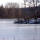 Danger Thin Ice !!!! by Brenda Dow