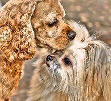 Is it love? by LudaNayvelt