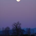 Glorious Full Moon on a December Morning by peacegirl