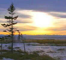 Mountain Skyline by Barrie Daniels