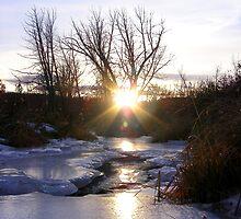 Frozen Creek Sunset by Barrie Daniels