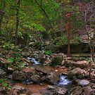 Blanchard Springs Little Stream by kittyrodehorst