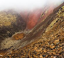 Timanfaya National Park (2) by Neil Buchan-Grant