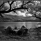 Ullswater framed by Shaun Whiteman