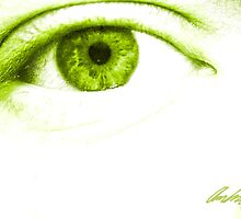 My Crazy Eye by Andrew Connell