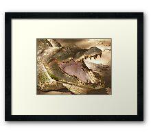 KACHIKALLY CROCODILE POOL . Framed Print