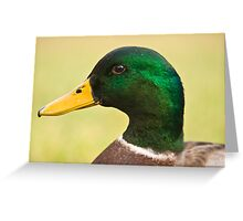 Just Ducky! Greeting Card