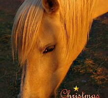 HORSE LOVER CHRISTMAS CARD - MERRY CHRISTMAS by Cheryl Hall