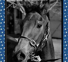 HORSE CHRISTMAS CARD - BLACK & WHITE HORSE - MERRY CHRISTMAS by Cheryl Hall