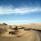 October: Desert at 10,000 feet - Qinghai, China by cyclenavigator