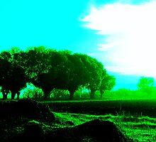 Greenish by Dory Zaatar