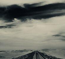 Desert Rail Tracks  by Amir Sourial