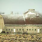 1890 Minnesota ~ Round Barn by Diane Trummer Sullivan