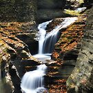 New York's Watkins Glen IX  by PJS15204