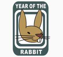 Funny Year of The Rabbit by ChineseZodiac