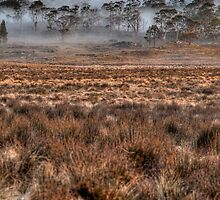 Barn Bluff across the misty plains - Cradle Mountain National Park by anobleperson