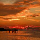 Pine Island Sunset by Rosalie Scanlon