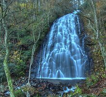 Crabtree Falls III by David Allen