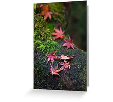 Patterned leaves 3 Greeting Card