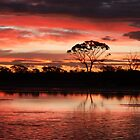 Sunset over Lake Yarra Yarra  by Karry Smith