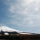 Mount Fuji from 5th Station  by jojobob