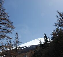Mount Fuji, Japan  by jojobob