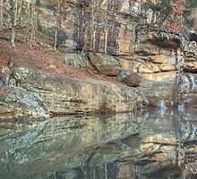 The Swimming Hole - Bell Smith Springs by David Allen