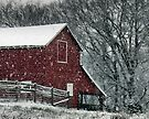 Barn Bluster by © Bob Hall