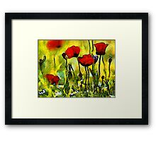 Poppies in the Morning Framed Print
