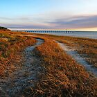 Lighthouse Road by DanAlford
