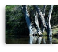 landscapes #12, rivers edge Canvas Print