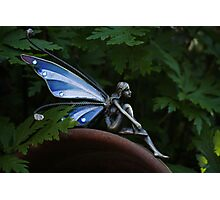 Fairy Dreaming 3 Photographic Print