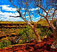 Dales Gorge by Sheldon Pettit