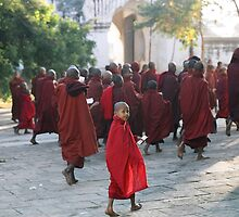 Young monk to his first Ananda Festival by Pierre Vandewalle