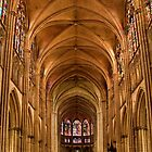 Cathedrale Troyes. France by MaluC