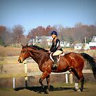 Trot Your Horse by Linda Miller Gesualdo