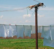 Washing on Clothes Line  by jojobob