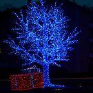 Blue tree by Frederic Chastagnol
