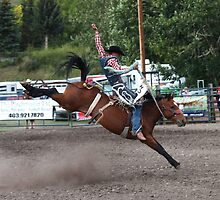 Cochrane Lions Rodeo #17, 2009, Canada. by Felicity McLeod