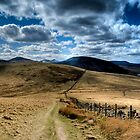 Pentland Hill View by Claire Tennant