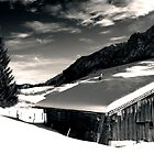 Winter, Austria by Sabine Jacobs