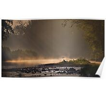 Great Blue Heron, River Mist Poster