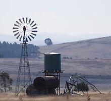 Water Wheel at Work by Helen Greenwood