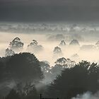 Morning Mist Over Gisborne by Denise Martin