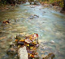Autumn in Paklenica by Ivan Coric