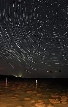 Star Trails Over Lake Clifton Thrombolites by EOS20