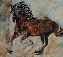 horse 561 by calimero